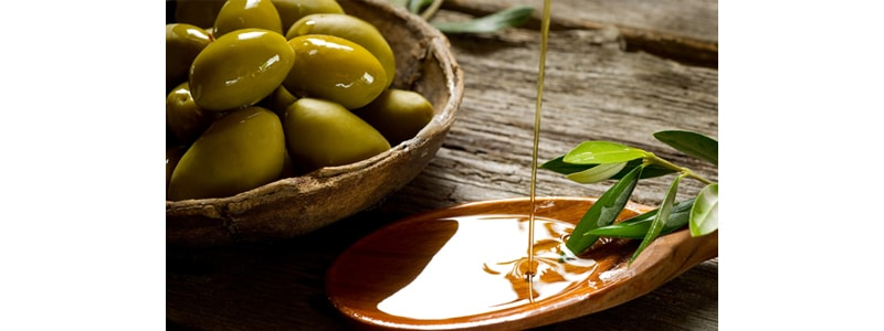 Assicurazione olive Preventivo Online