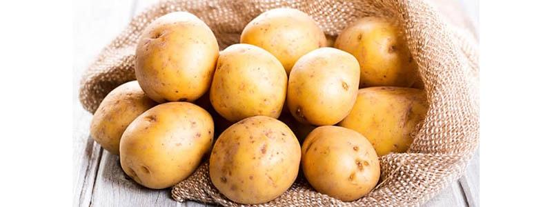 Assicurazione patate Preventivo Online