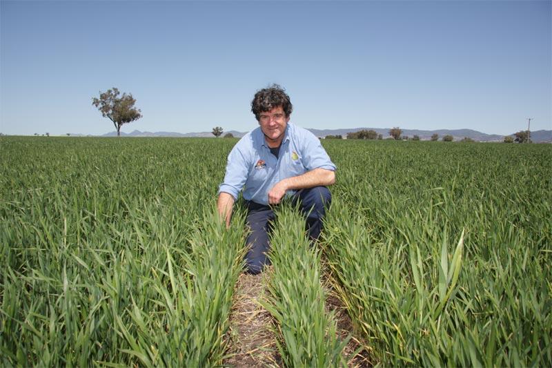 Assicurazione perito agrario Preventivo Online